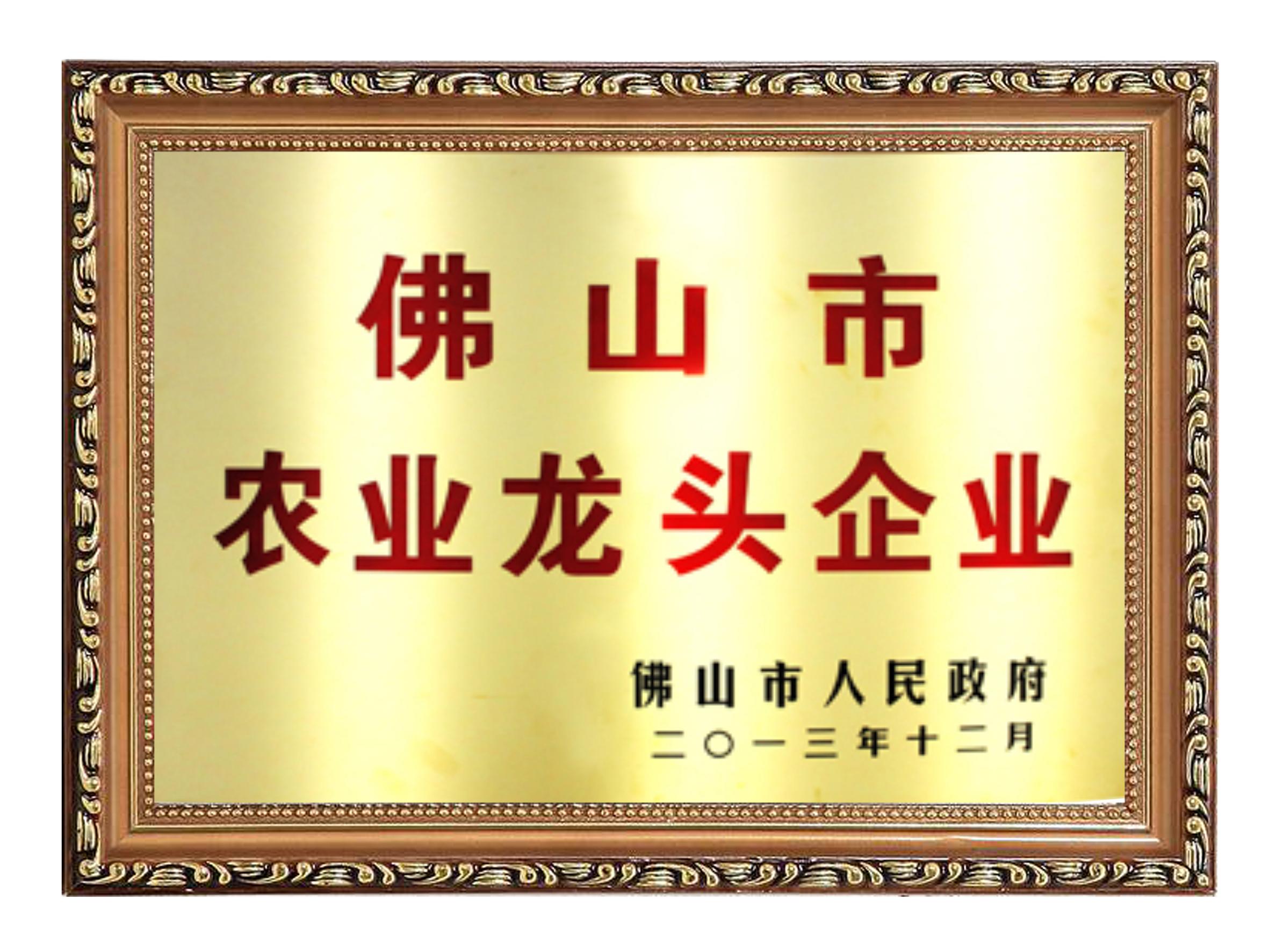 2013佛山市龙头企业