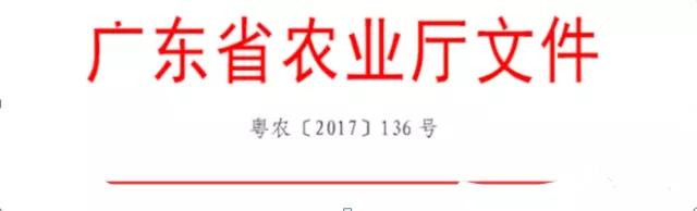 """热烈祝贺佛山盈辉荣获""""广东省重点农业龙头企业""""称号"""