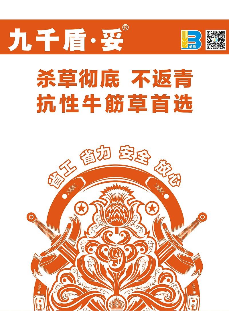 九千盾·妥单页2020v1_看图王