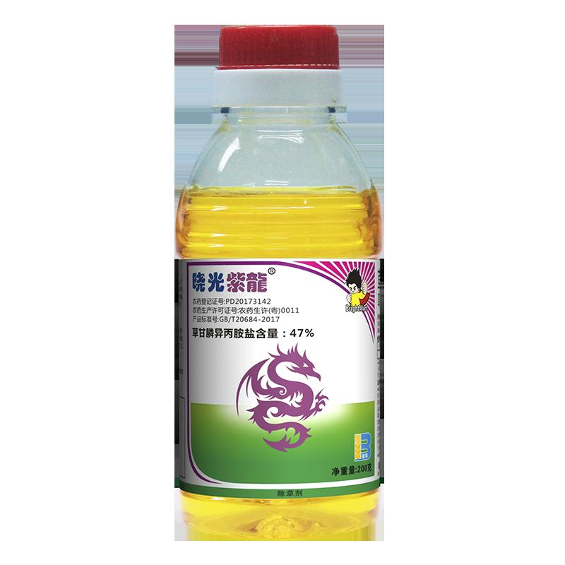 晓光紫龙瓶照